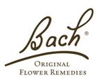 kurzy vPlzni, Bachovy esence namíru