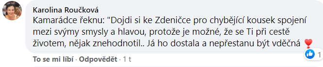 Reference Zdeňka Šulcová